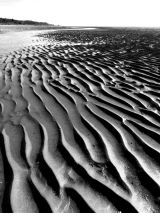 Ripples in Monochrome