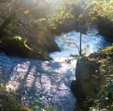 Dappled Sunlight over falls