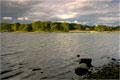 Esthwaite Water, Lake District