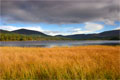 Meall a' Bhuachaille and Loch Morlich