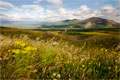 Glen More, Cairngorms