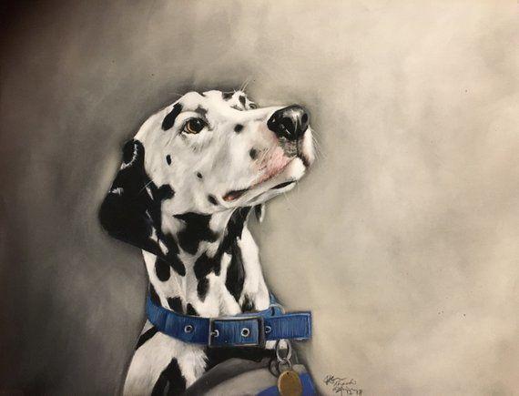 Digby the Dalmatian