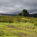 Public Bridleway to Arkenside Pasture