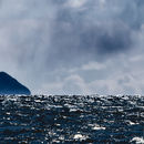 Storm over Ailsa Craig - panorama