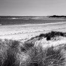 Alnmouth beach - mono