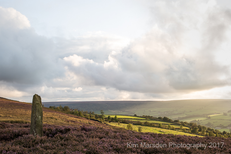 Late evening light over North York Moors