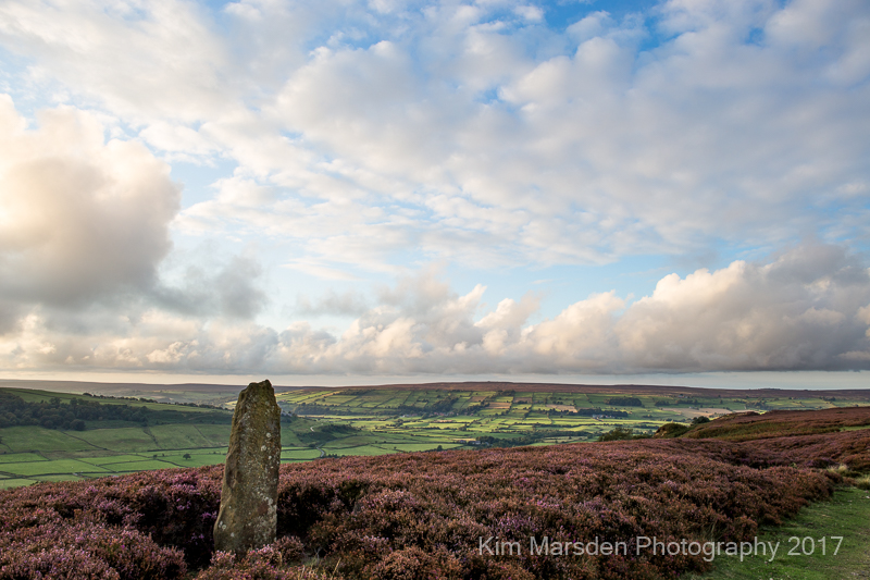 Late evening light North York Moors