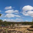 Pronie Loch - Nr Glenkindie, Scotland