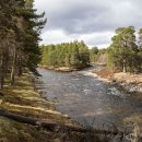 River Dee - May Lodge Estate