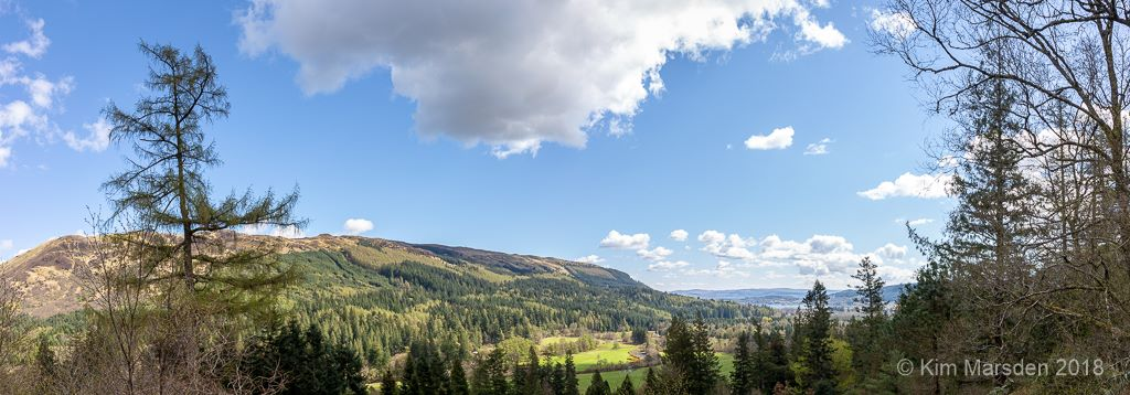 Towards Holy Loch from Benmore Botanic Gardens (Pano)