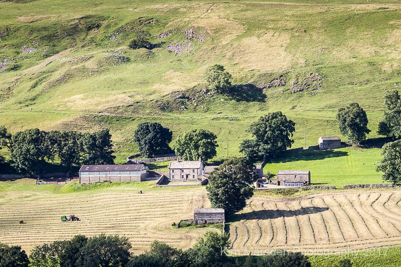 Swaledale at work as evening shadows lengthen