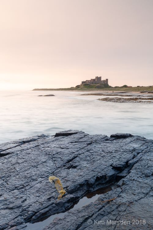 Bamburgh Castle at first light