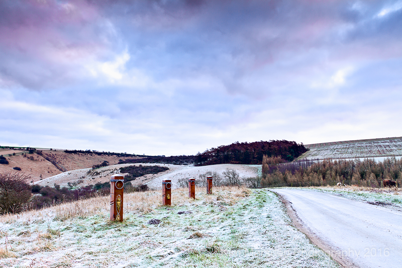 Frosty morning looking towards Sylvan Dale - Yorkshire Wolds