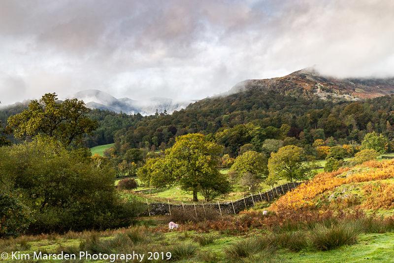 Autumnal Langland valley