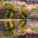 Reflections in full colour