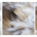 Movement triptych