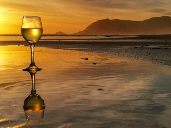 Backlit wine-cathy