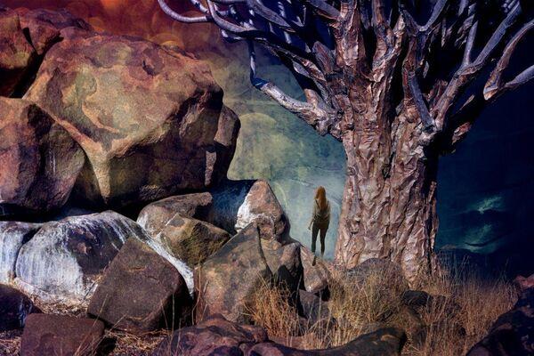 Beyond the Quiver Tree-CA-Elliott-Sonia-MG