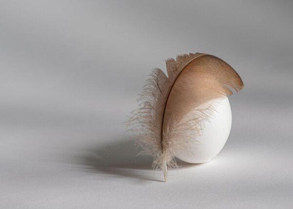 Elegant egg