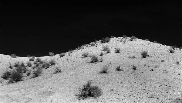 Kalahari Dune-M-Laubscher van der Merwe-Alta-4STAR