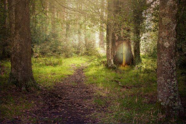 Magic Lies Ahead-CA-Elliott-Sonia-MG