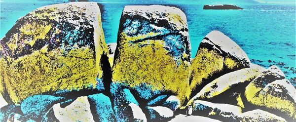 Tiny boulders penguin-CA-Fleet-Douglas-2STAR