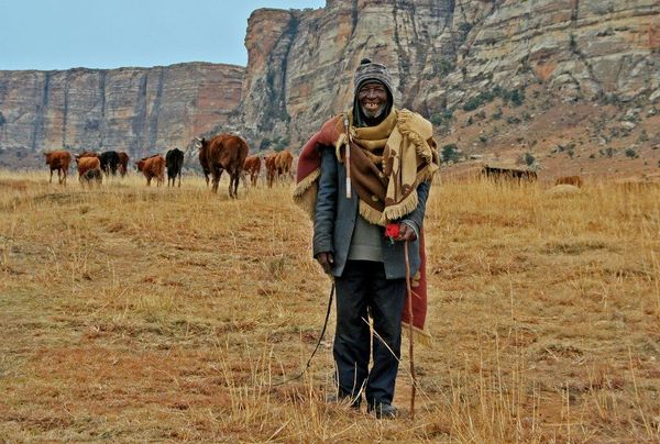cattle herder-P-Hunter-Mary-MG