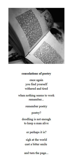 consolations of poetry