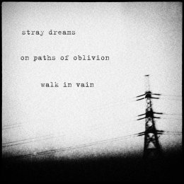 stray dreams