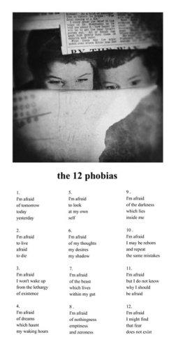 the 12 phobias