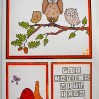 Owl 10x7