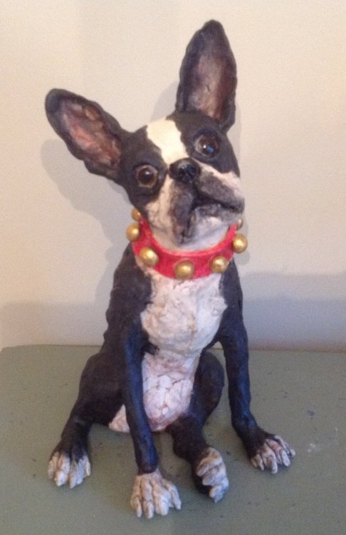 bling Boston terrier