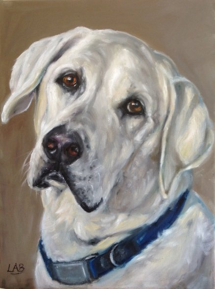 Labrador commission
