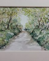 Muddiford road