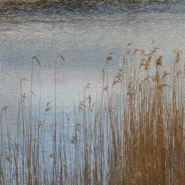 'Blue Reeds'