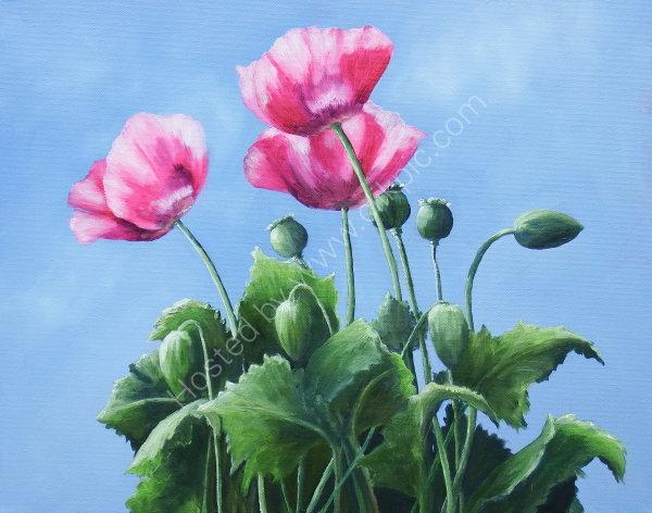 'Summer Poppies II'