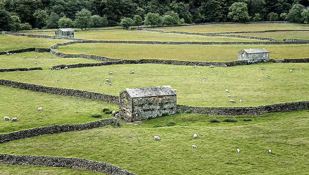 Barns and Dykes