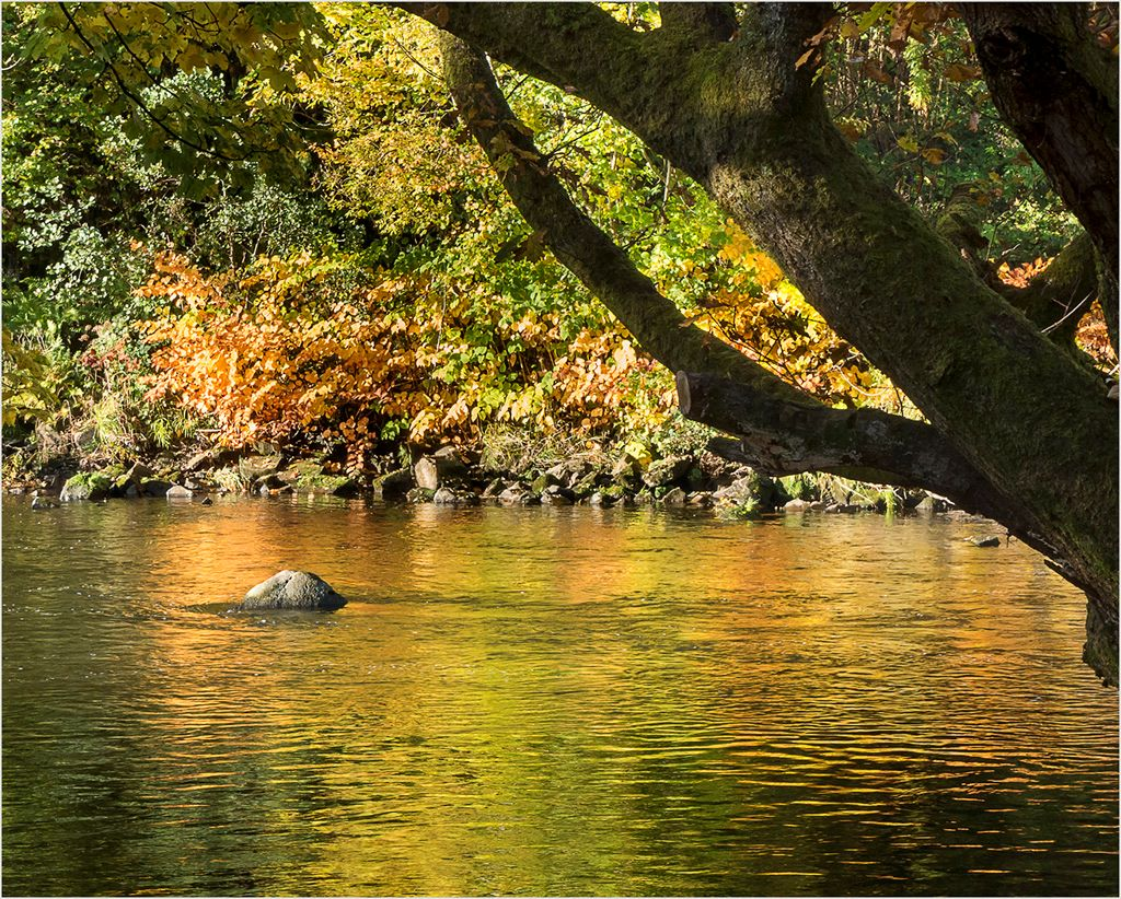 Clydeside Autumn