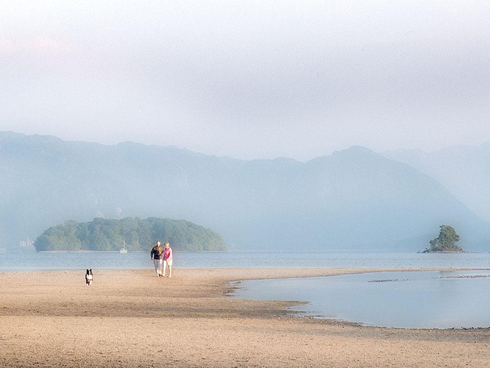 Lakeside Stroll