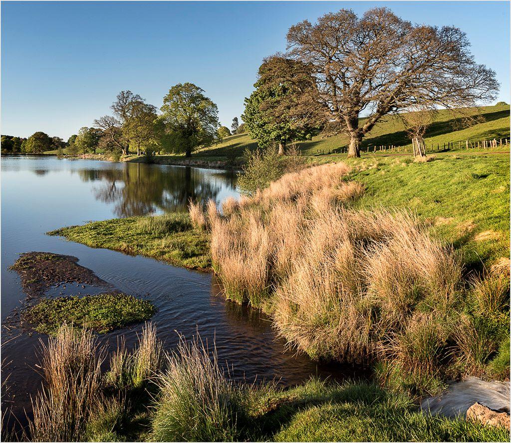 Landscape Douglas