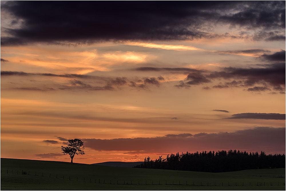 Sunset Thankerton