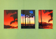 Triptych Image of Hawaii