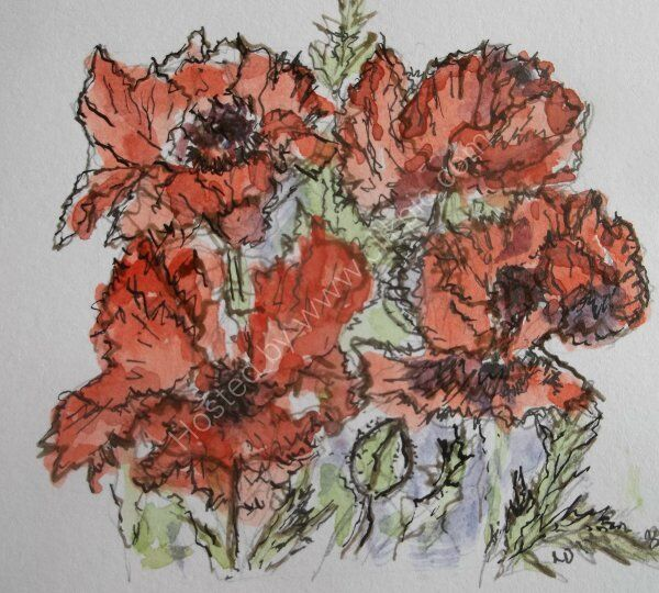 Poppies at Midday