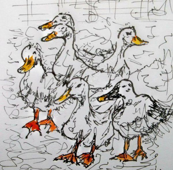 Busy Ducks