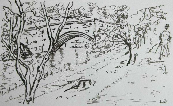 Along the River at Warkworth
