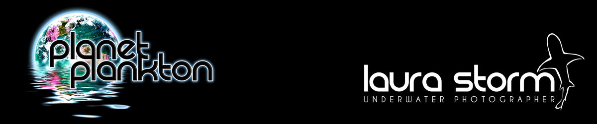 Planet Plankton