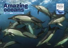 Amazing Oceans 2019 Calendar