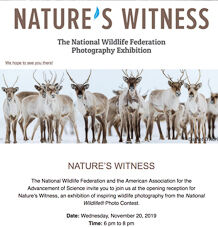 Nature's Witness - NWF Photography Exhibition