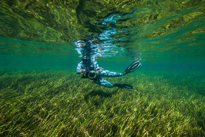 Freediving in Rainbow River, image courtesy of Mark Harris