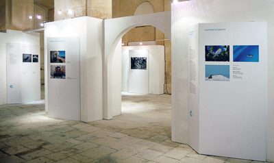 Out of the Blue exhibition, image courtesy of Victoria Forrest.